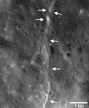 This prominent thrust fault is one of thousands discovered on the moon by NASA's Lunar Reconnaissance Orbiter (LRO). These faults resemble small stair-shaped cliffs, or scarps, when seen from the lunar surface. The scarps form when one section of the moon's crust (left-pointing arrows) is pushed up over an adjacent section (right-pointing arrows) as the moon's interior cools and shrinks. New research suggests that these faults may still be active today. Image Credit: LROC NAC frame M190844037LR; NASA/GSFC/Arizona State University/Smithsonian (Click image to download hi-res version.)